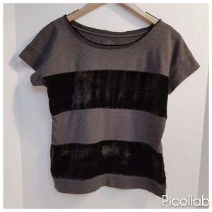Ann Taylor Loft Grey Jersey/Black Velvet Tee
